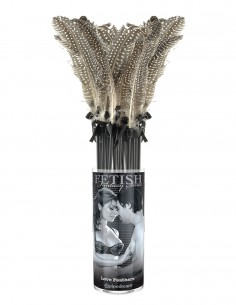 Fetish Fantasy Limited Edition Love Feathers