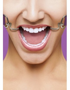 Ouch Hook gag purple