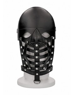 Ouch Leather male mask